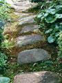 飛石の写真