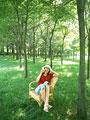 木陰の女性の写真
