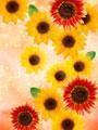 花イメージ(CG)の写真