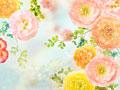 春イメージ(CG)の写真