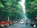 北京の車道の写真