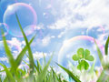 青空と草原の写真