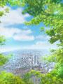 樹木と市街地の写真
