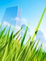 ビル街と草むらの写真