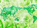 世界地図と葉の写真