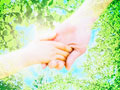 手をつなぐ親子と葉の写真