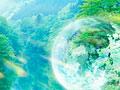 森林と地球儀の写真