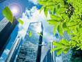 ビル街と葉の写真