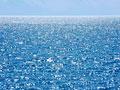 海面の写真