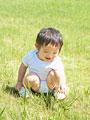 芝生で遊ぶ男の子の写真