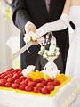 ケーキカットをする新郎新婦の写真