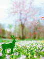 花畑にいる鹿のイメージの写真