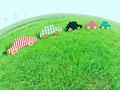 草原のエコカーイメージの写真