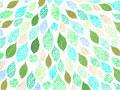 葉イメージの写真