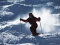 スキーの写真