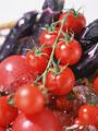 トマトとナスの写真