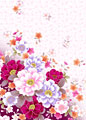 バラと桜の写真