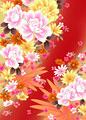 シャクヤクと菊の写真