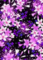 百合と小花の写真