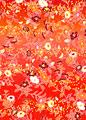 ひな菊に椿の写真