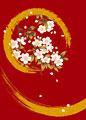 雪月花の写真