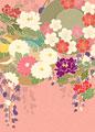 桜に菊絵皿の写真