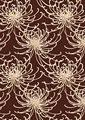 糸菊の写真